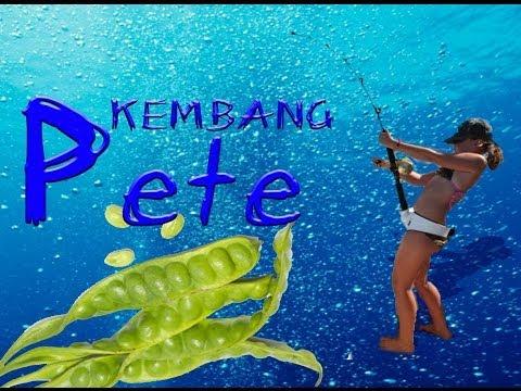 KEMBANG PETE with lirik
