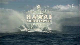 Hawai, Archipel Sauvage - Episode 1 - La Terre Et Le Feu