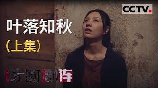 《方圆剧阵》 20210109 叶落知秋(上集)| CCTV社会与法 - YouTube
