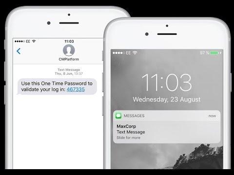 Sending SMS (OTP/Transactional/Promotional) using API through Python 3 |  Bulk SMS | Prank SMS
