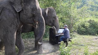 """""""And The Waltz Goes On"""" by Anthony Hopkins on Piano For Elephants"""