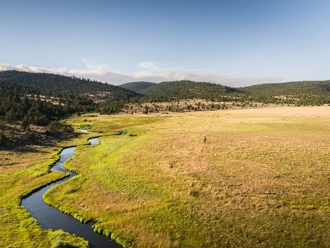 Sportsman Paradise   Spring Creek Ranch