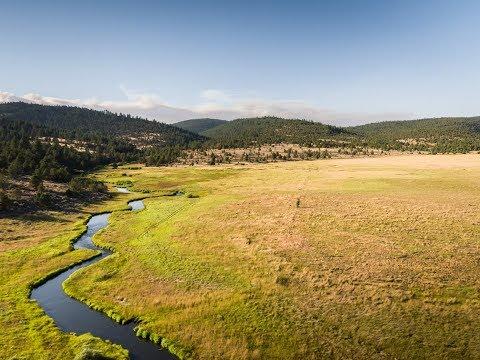 Sportsman Paradise | Spring Creek Ranch