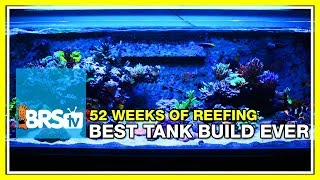 Our Best Reef Tank Build Yet: 52 Weeks of Reefing #BRS160