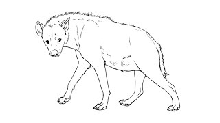 How to Draw a Hyena / Как нарисовать гиену