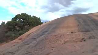 Baby Lion's back Jeep Wrangler JK off road adventure Moab