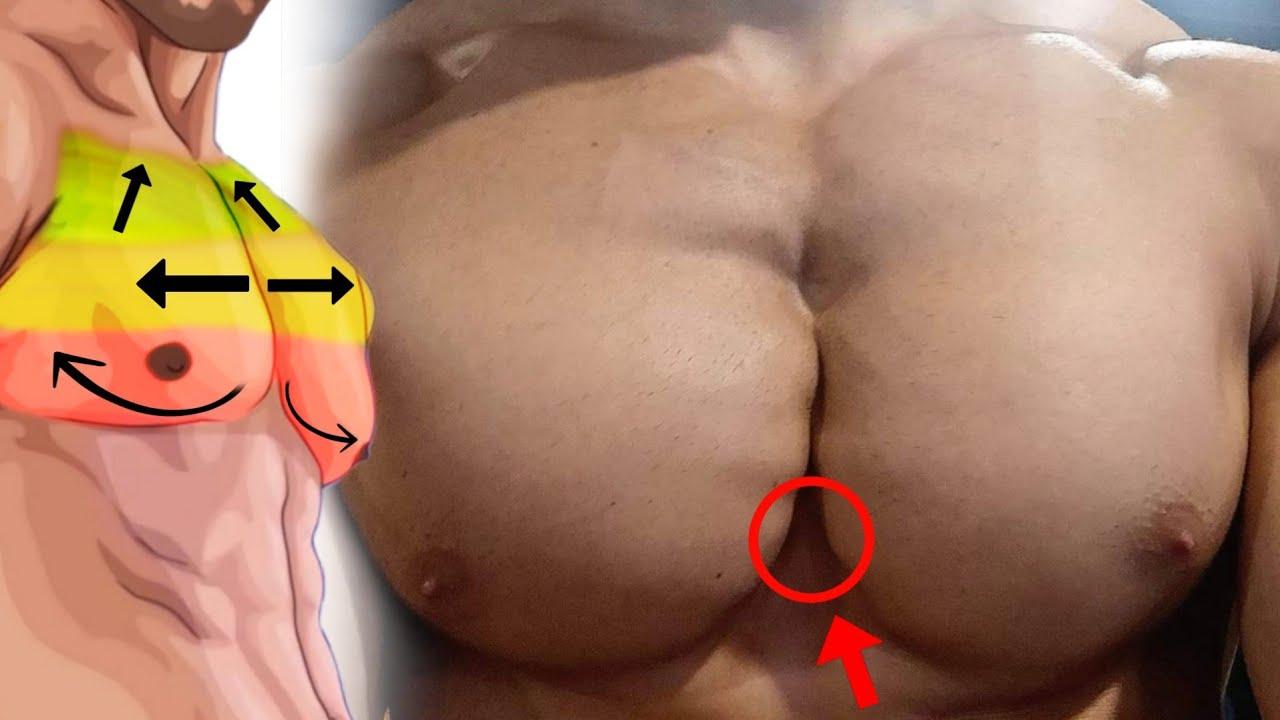8 تمارين عليك القيام بها لبناء صدر كامل بدمبل فقط ! كمال الاجسام - Dumbbell Chest exercises