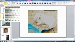 Microsoft Office 2010 - PowerPoint - Photo and Video Editing
