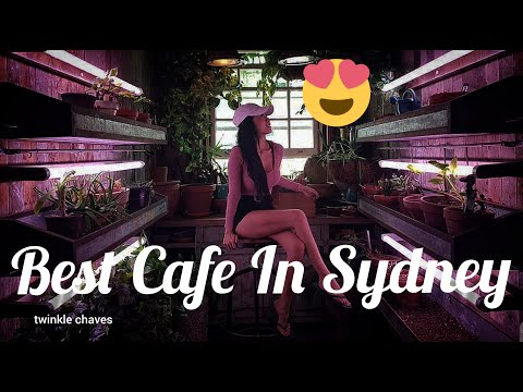 BEST CAFE IN SYDNEY | Twinkle Chaves