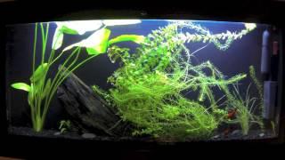 Aqua Vista - 6 Month Review