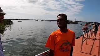Kisite Mpunguti Marine Nat'l Park