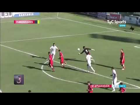 Increible: Un perro le atajó un gol a Juventud Unida de Gualeguaychú
