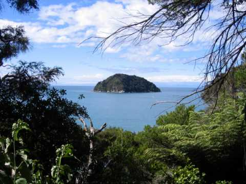 Think What the Climate Could Change: Ecosystems of New Zealand