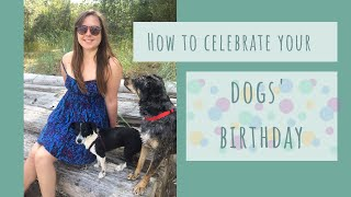 How to Celebrate your Dog's Birthday - Penny's 3rd Birthday Vlog