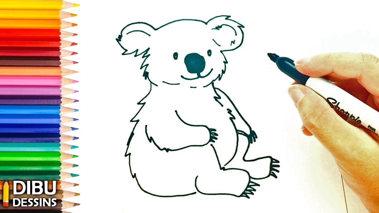 Comment Dessiner Un Koala Dessin De Koala Youtube