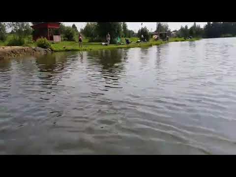 Платная рыбалка в еганово