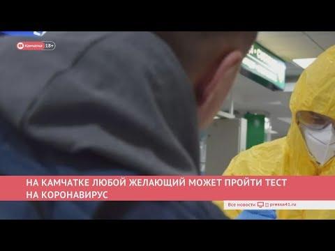 Камчатка: Новости дня 27.03.20
