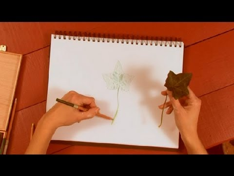 How To Draw Leaves With Colored Pencils How To Draw With Colored Pencils Youtube