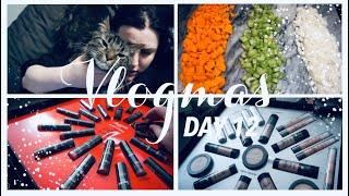 HOLIDAY PR & SHEPARDS PIE - VLOGMAS DAY 12