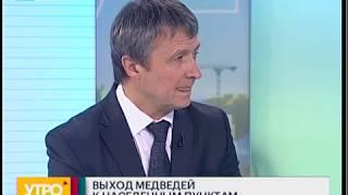 Выход медведей к населенным пунктам. Утро с Губернией. 13/09/2018. GuberniaTV