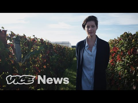 wine article Climate Change Is Coming For Wine  Vice On Hbo