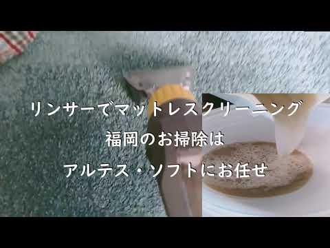 マットレス・絨毯クリーニング【リンサーってこんな感じです】