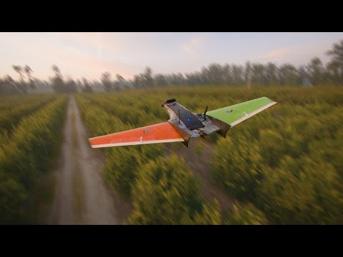 FPV Drone Dances With RC Airplane || Cinematic FPV