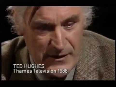 The Thought Fox by Ted Hughes: Summary and Analysis