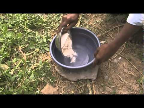 Treatment for diarrhoea in cattle Kannada BAIF Karnataka