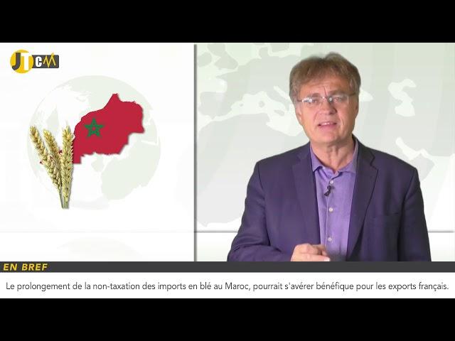La non-taxation des imports de blé au Maroc pourrait profiter à la France !