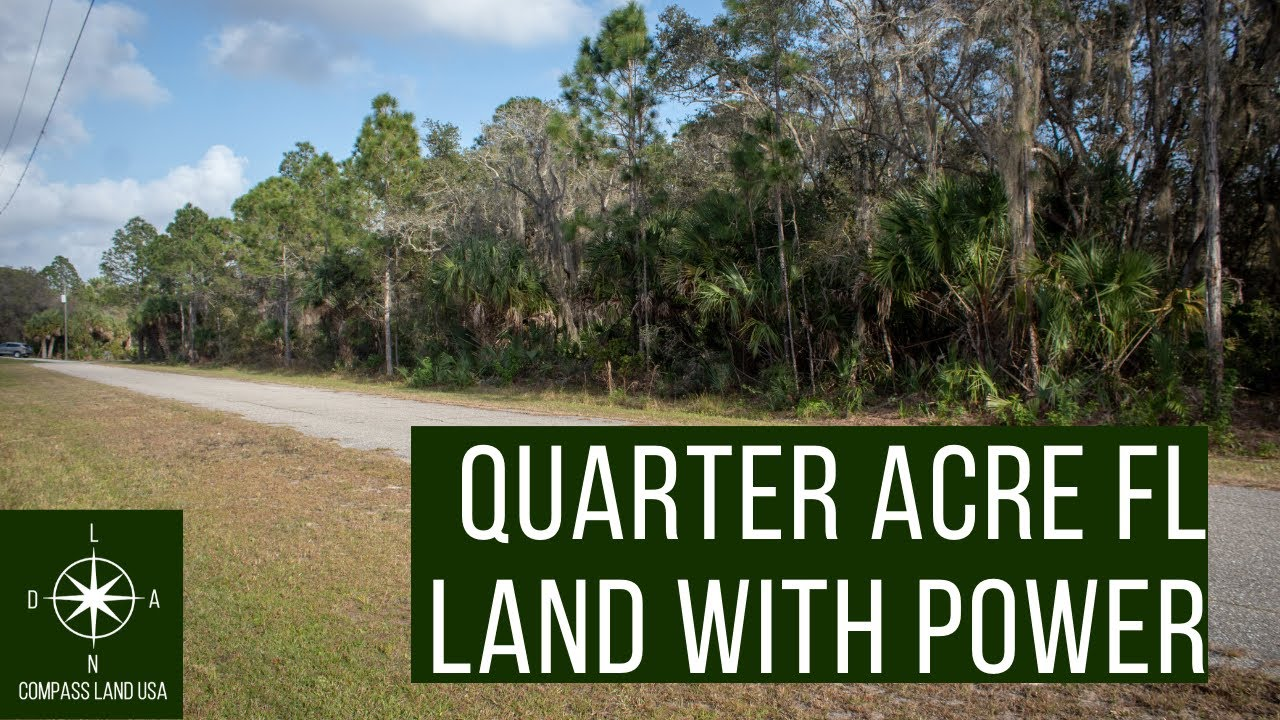 0.23 Acres in Port Charlotte FL With Power