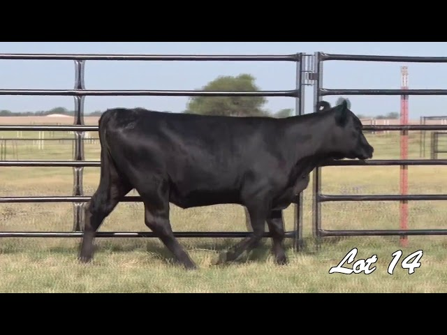 Pollard Farms Lot 14