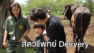 สัตวแพทย์ Delivery : Animals Speak [by Mahidol]