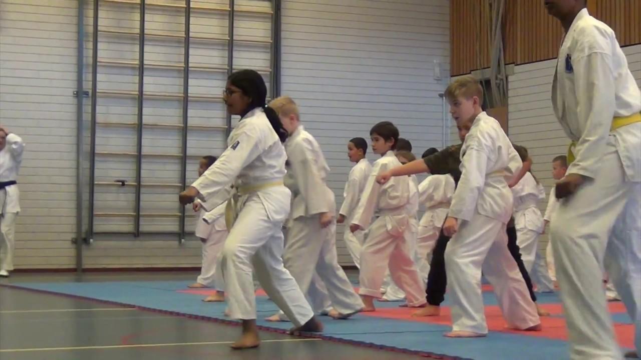Download Rene Smaal Karate