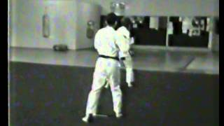 Matayoshi Tonfa Ni Bill & Dan 1981