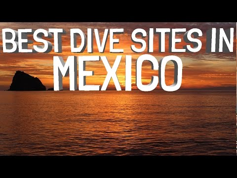 Best Dive Sites In Mexico