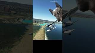 Landing in a SWIMMING POOL?! (#Shorts) Real Pilot Plays Microsoft Flight Simulator