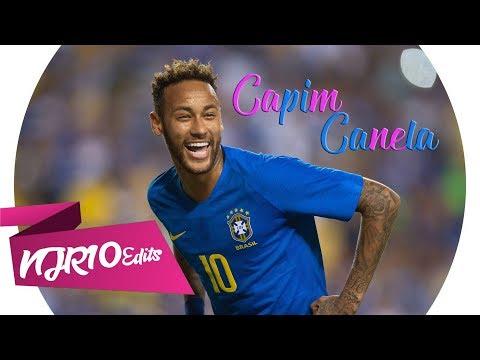 Neymar Jr - Capim Canela MC Brinquedo e MC Pedrinho