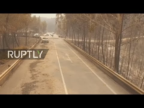 Drone LIVE from Portugal following deadly forest fires