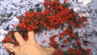 видео Жидкие обои своими руками