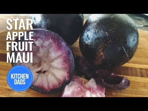 What is a Star Apple Fruit and What Does it Taste Like | Kitchen Dads Cooking