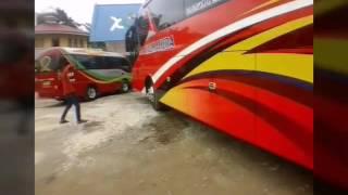 Riview new bus HALMAHERA LAKSANA