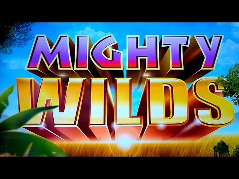 Video Casino 1x
