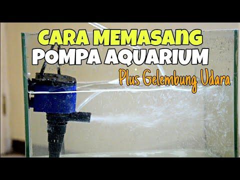 cara-memasang-pompa-aquarium-power-head