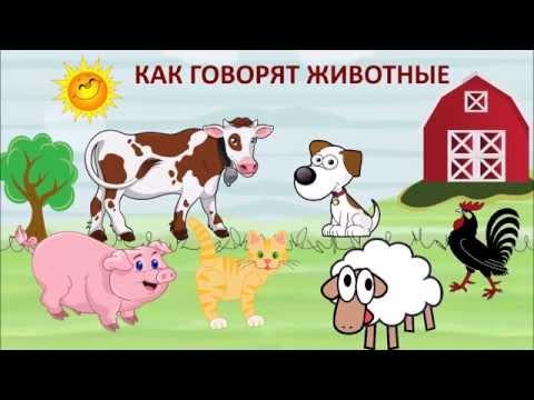 Тайная жизнь домашних животных смотреть бесплатно онлайн в