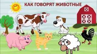 Как говорят животные - звуки и голоса домашних животных