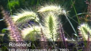 Video Roselend - Les 40èmes rugissants download MP3, 3GP, MP4, WEBM, AVI, FLV November 2017