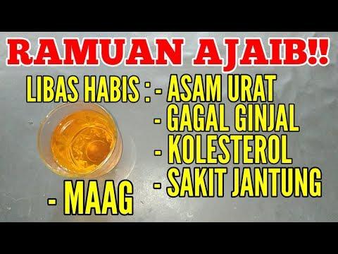 sangat-ajaib!-minum-ini,asam-urat,gagal-ginjal,kolesterol,sakit-jantung,dan-maag-sembuh-secara-alami