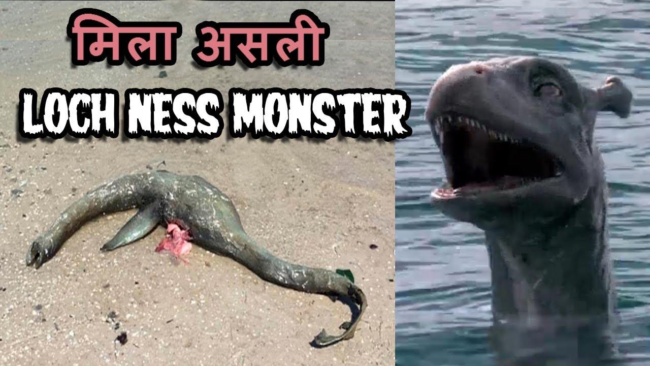 Download 1500 साल बाद उठा इस रहस्य से पर्दा   Most Mysterious Loch Ness Monster Mystery Solved in Hindi