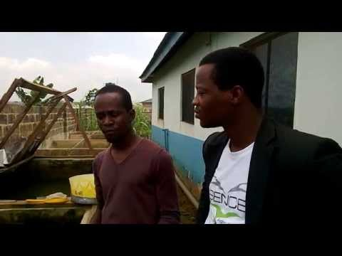 Fish Farming - An investment destination for all